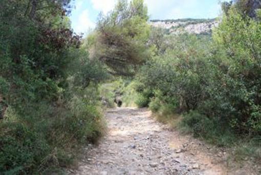 Outdoor: CAI e ANCI puntano su 110mila km di sentieri italiani