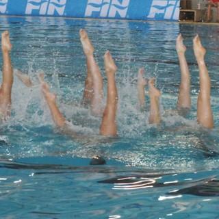 Syncro: da giovedì la RN Savona in acqua per i campionati estivi Juniores