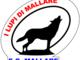 """Calcio. Mallare, la presa di posizione della società dopo il comunicato del Quiliano&Valleggia: """"Non possiamo accettare la divulgazione di false notizie"""""""