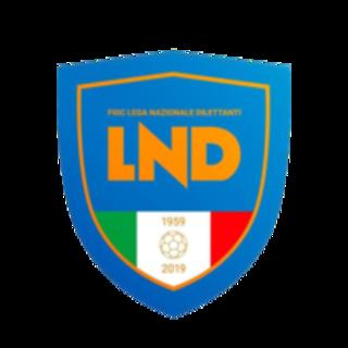Confermati i tabelloni di Coppa Italia di Serie D, Eccellenza e Promozione. Ecco il regolamento