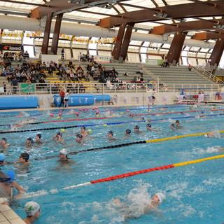 Nuoto: ultimi appuntamenti della stagione per gli atleti della Rari Imperia, nel weekend finali regionali